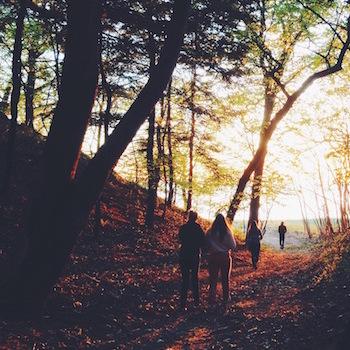 People walking through wood